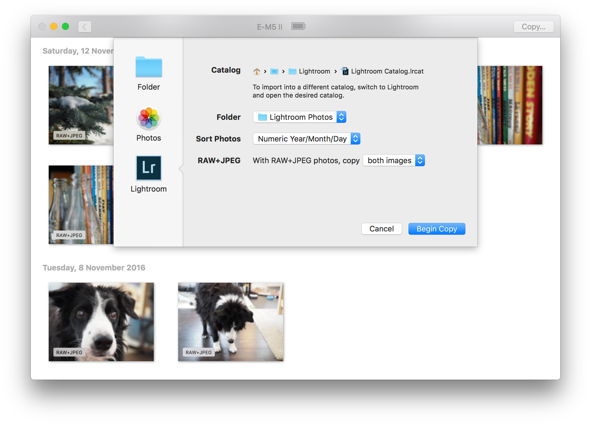 Cascable Transfer for Mac - Import photos from your WiFi-enabled camera Image